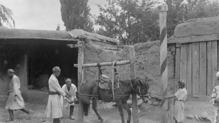 Экспедиция Маннергейма в Узген