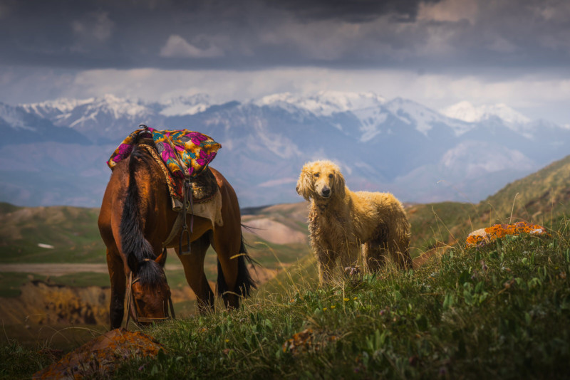 Памир: прогулки у пика Ленина